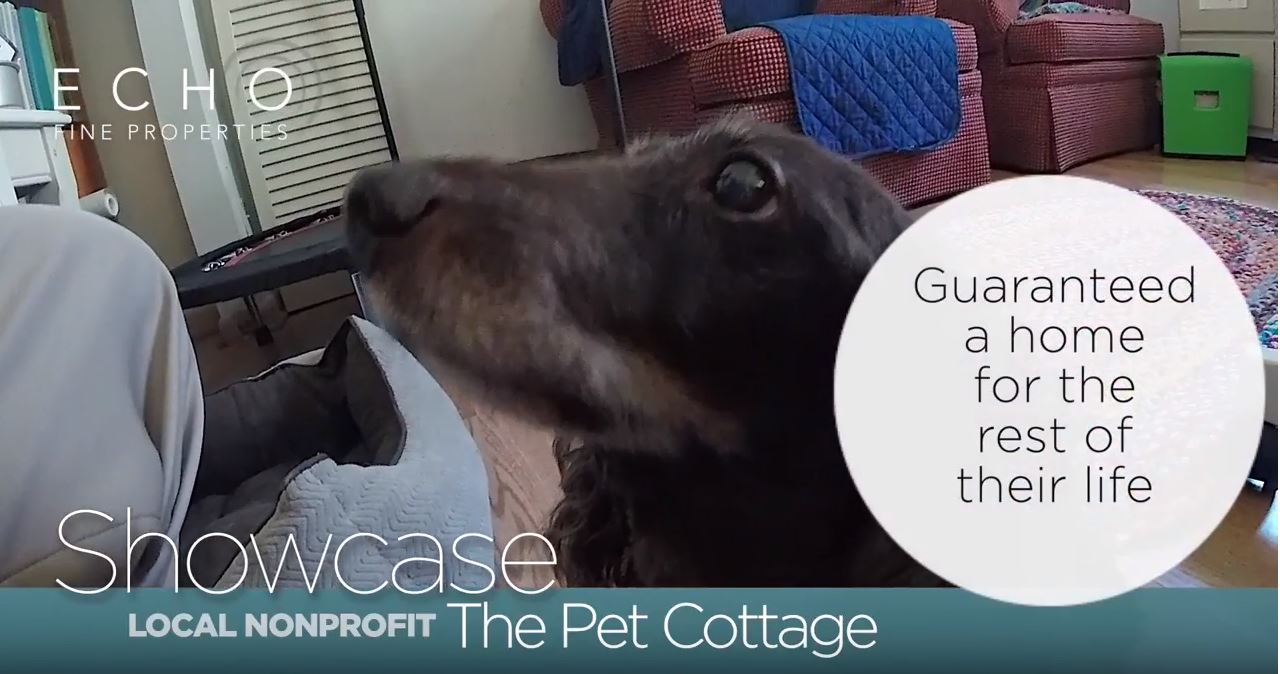 The-Pet-Cottage