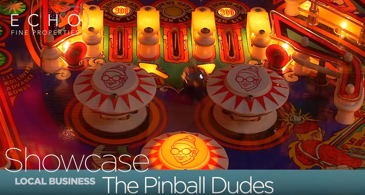 The-Pinball-Dudes