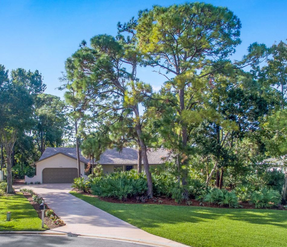 Just Listed   Enchanting in Eagle's Nest   19060 Talon Way